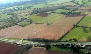 Willow farm 1